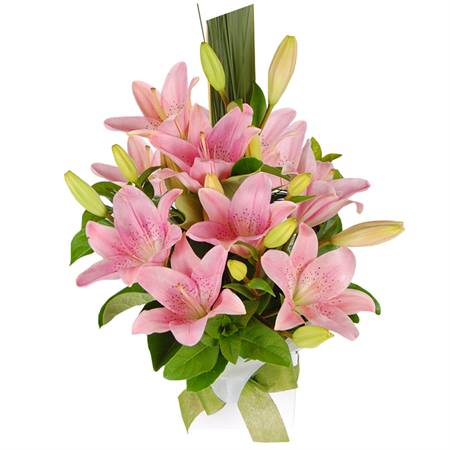 https://www.1300flowers.com.au/Skin/1300Flowers/Images/Products/450,450/flowers-katie.jpg